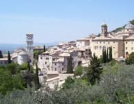 assisi_side