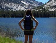 mountain_lake_bush