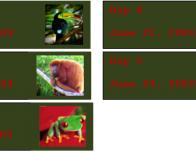 Costa_Rica_Journal_s_Dates