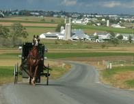 Horse-Drawn Buggy in Amish Farm Country, Pennsylvania