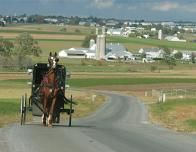Horse and Buggy in Pennsylvania Dutch Farm Country, Courtesy DiscoverLancaster.com/Terry Ross