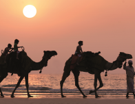 Kid's Camel Ride at Sunset, Ritz Carlton Dubai