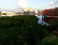 Mangrove surrounding the resort keeps the beach & lagoon pristine.
