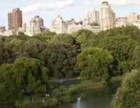 Central Park Amidst Skyscrapers, New York, NY