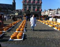 The Cheese Market in Gouda, a Town in the Western Netherland.
