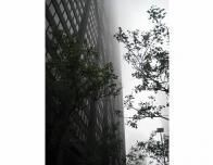 Foggy Chicago weather + building
