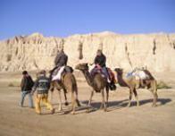 eilat_camel_ride_963962443