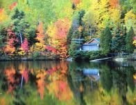 Autumntreesandlake_853294137