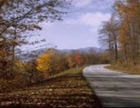 Blue_Ridge_Parkway_Road_Trees_905469099