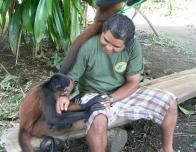 A Monkey and Staff Member at Osa Wildlife Sanctuary