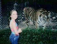 NewJersey_Tiger_107419885