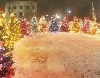 Check out the Christmas trees in Germany this season