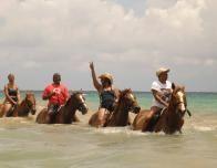 jamaica_horseback_910239365