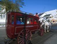 Enjoy a Horse-Drawn carriage ride in Mackinac Island