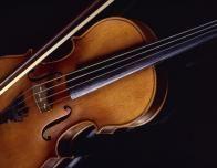 violin_144375815