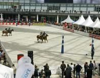 Munich_airport_polo_rink_676127738