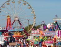 North Carolina state fairgrounds highlights agriculture and food events.