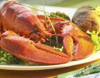 New England is famous for its lobster -- try Legal Seafood.
