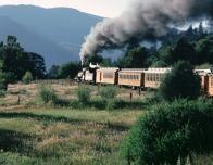 train_469593870