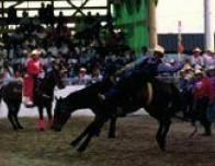 tx_rodeo_523696225