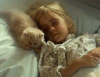 kitty_473639123