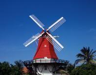 Aruba_Red_Windmill_875501149