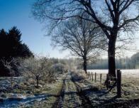 vermont_snowy_field_991296231