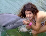 dolphin_swim_jamaica_191151966