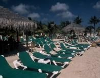 multple_green_resort_chairs_with_palm_trees_on_beach