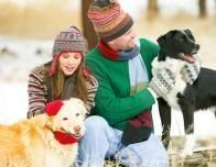 snowfall_dogs_owners_207522953