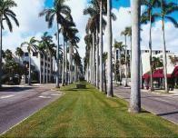 Florida's Route 1
