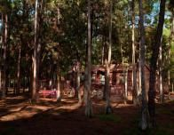 Spend your nights in the tranquil yet fun Fort Wilderness