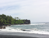 An additional picture taken from the Road to Hana; The Black Beach