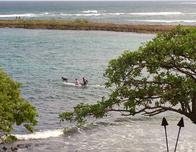 Hawaii, North Shore of Oahu where men and dogs surf.