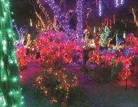Cactus Garden at holidays, Henderson, Nevada