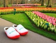 Tulip Fields & Dutch clogs to play in, at Keukenhof during the 2014 season.