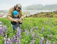 Chris & Skyler Rainier share the wildflowers of Iceland. c. R.L. Hopkins, Lindblad-National Geographic