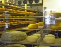 Cheese Wheels Stacked inside Thunder Oak Cheese Farm_0