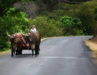 Costa Rica-5655-PS-rs