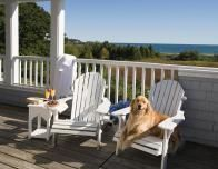 Pets welcome at Inn by the Sea