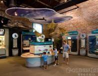 Sea Turtle Center - Jekyll Island