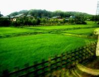 TravelScholarshipPhoto1