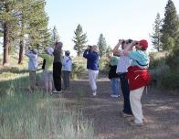 family_nature_summits_birding_Lake_Tahoe