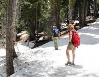 family_nature_summits_hiking_Ellis_Peak