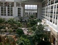 gaylord-texan-atrium