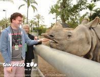 Feeding a rhinoceros during a San Diego Zoo Animal Interactions program.