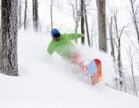 vermont-bromley-powder