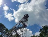 Fire Tower at Monroe Lake