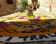 A flower painting made for the Infiorata Festival in Spello.