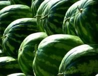 Head to Hope Arkansas for a good old-fashioned watermelon festival